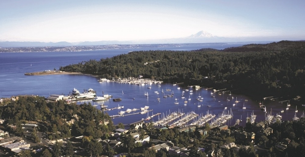 An arterial photo of Puget Sound with boats docked surrounded by greenery and homes