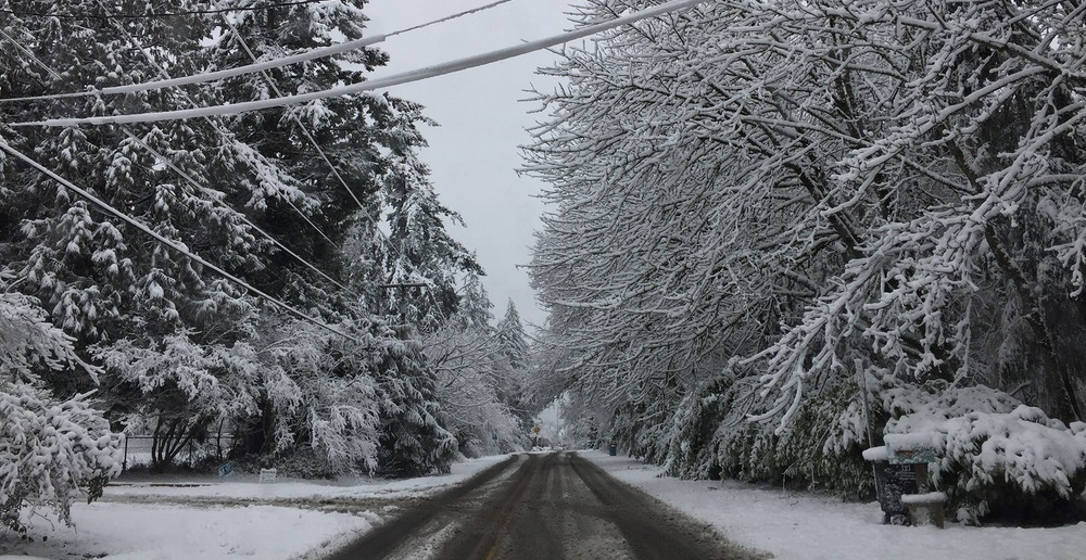 Fletcher Bay Rd NE on Bainbridge is covered with snow after a storm in February 2017
