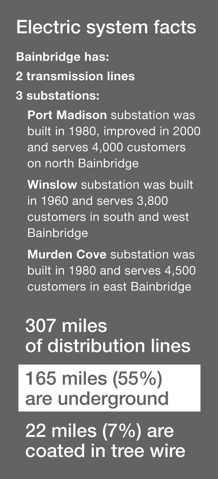 Bainbridge electric system facts