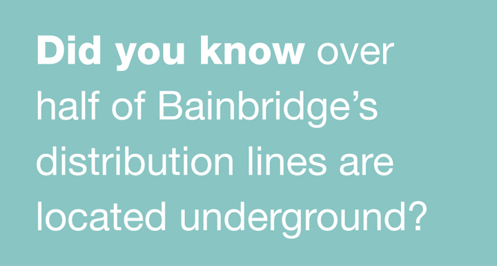 Did you know over half of Bainbridge's distribution lines are located underground?